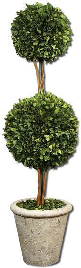 Preserved Boxwood 2-Ball Topiary--Home Accessories