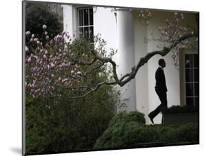 President Barack Obama Walks Down the Colonnade to the Oval Office of the White House