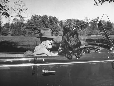 President Franklin D. Roosevelt Driving in His Convertible with His Dog Fala Through Hyde Park-George Skadding-Photographic Print