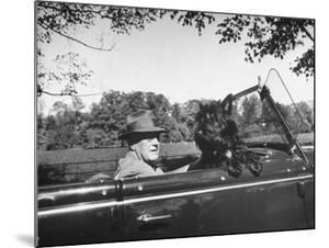 President Franklin D. Roosevelt Driving in His Convertible with His Dog Fala Through Hyde Park