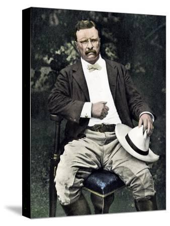 President Theodore Roosevelt Seated Outdoors, 1903
