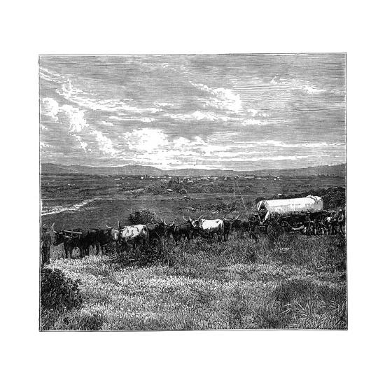 Pretoria, South Africa, C1890--Giclee Print