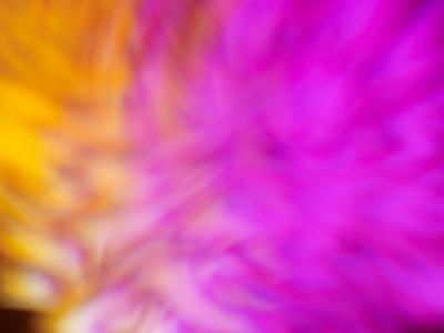 Pretty Pink-Sarah Silver-Photographic Print