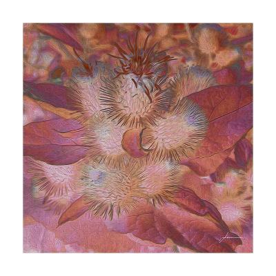 Prickley Tiles III-James Burghardt-Art Print