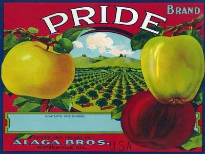 https://imgc.artprintimages.com/img/print/pride-brand-apple-label-watsonville-california_u-l-q1gob9u0.jpg?p=0