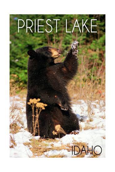 Priest Lake, Idaho - Bear Playing-Lantern Press-Art Print