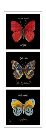 Primary Butterfly Panel I-Ginny Joyner-Art Print