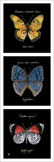 Primary Butterfly Panel II-Ginny Joyner-Art Print