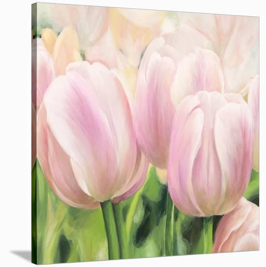 Primavera II-Luca Villa-Stretched Canvas Print