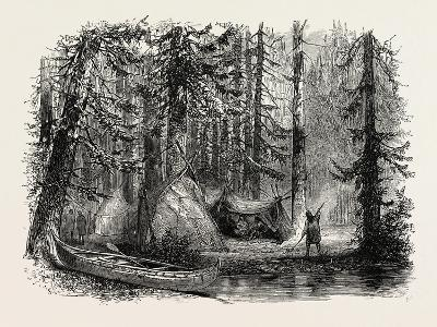 Primeval Forest and Indian Lodges, USA, 1870s--Giclee Print