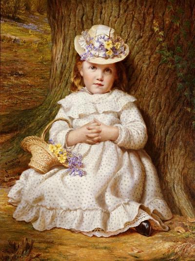 Primroses and Bluebells-Samuel Sidley-Giclee Print