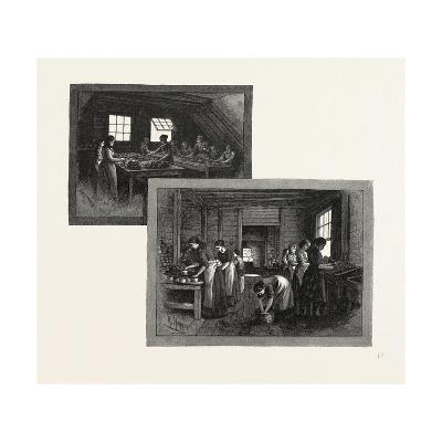 Prince Edward Island, Lobster Canning, Canada, Nineteenth Century--Giclee Print
