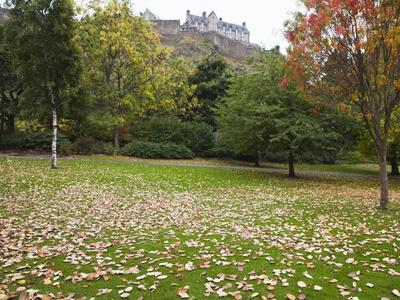 https://imgc.artprintimages.com/img/print/princes-street-gardens-and-edinburgh-castle-edinburgh-lothian-scotland-uk_u-l-pfoi0d0.jpg?p=0