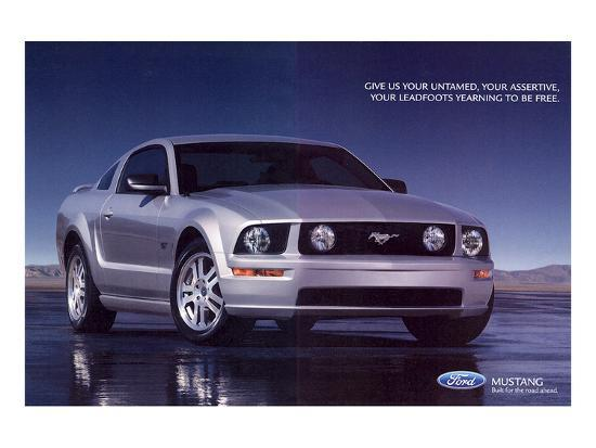 2005-mustang-your-untamed