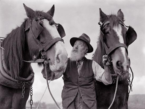 a-farmer-with-his-horses-1962