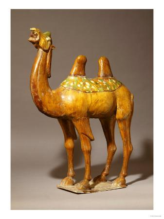 a-large-sancai-pottery-camel-tang-dynasty-7th-10th-century