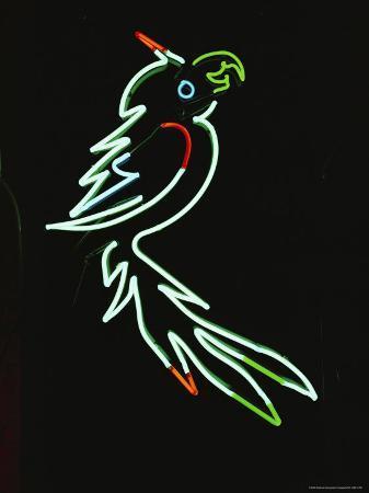 a-pale-green-neon-parrot