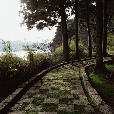 a-stone-footpath