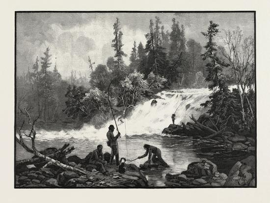 a-trout-pool-on-the-nepigon-canada-nineteenth-century