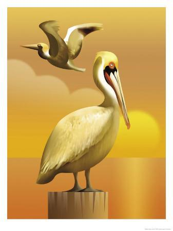 a-view-of-two-pelicans-one-standing-on-a-post-and-one-flying