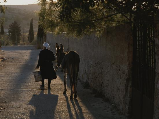 a-woman-and-her-donkey-walk-down-a-street-in-pyrgi-greece