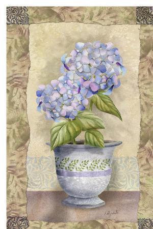 abby-white-spring-hydrangea