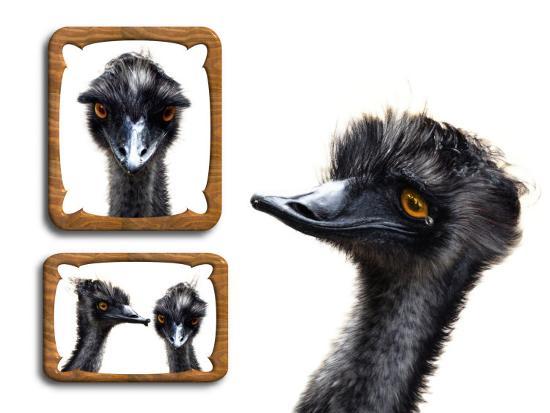 abdul-kadir-audah-emu-memories