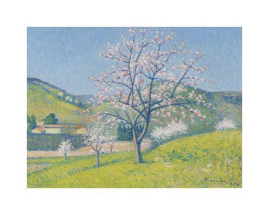achille-lauge-arbres-en-fleur-a-alet-les-bains-1924