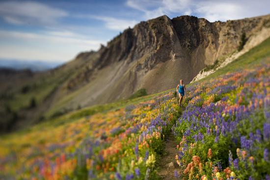adam-barker-a-woman-enjoys-a-morning-trail-run-in-a-meadow-of-wildflowers-at-snowbird-ski-and-summer-resort-ut