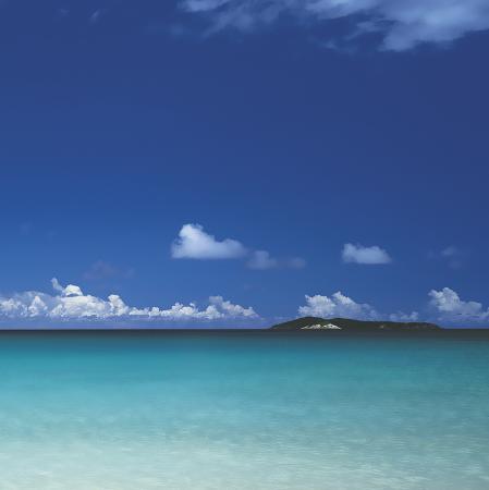 adam-brock-tropical-waters-iv