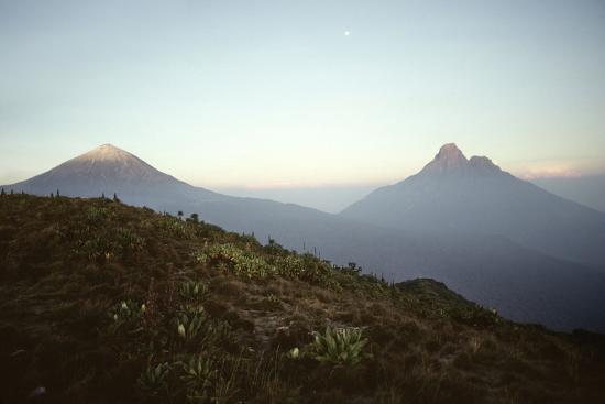 adrian-warren-rwanda-virunga-volcanoes-karisimbi-and-mikeno