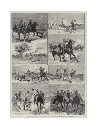 adrien-emmanuel-marie-a-day-s-work-on-a-queensland-cattle-station-australia