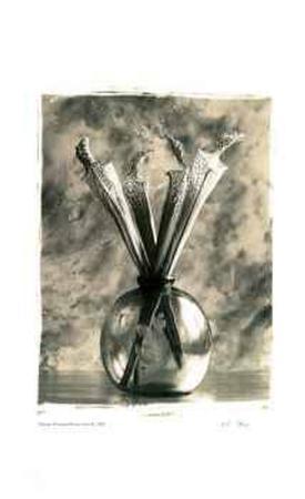 adriene-veninger-flower-vase-ii