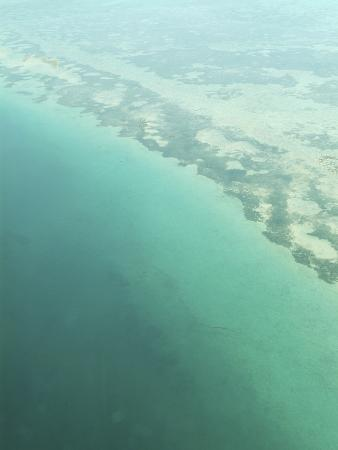 aerial-view-of-green-seashore-and-island