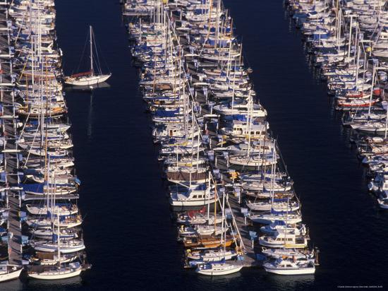 aerial-view-of-shilshole-marina-seattle-washington-usa