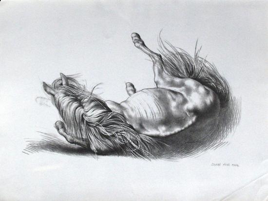 akos-szabo-cheval-couche