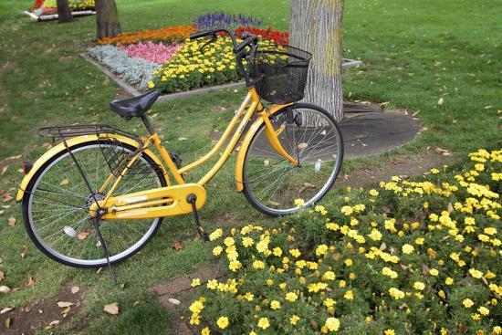 alan-blaustein-japan-bicycle-1