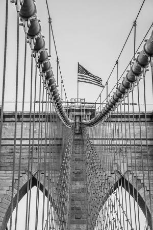 alan-copson-brooklyn-flag