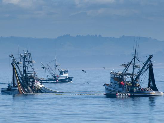 alan-copson-california-monterey-fishing-boats-usa