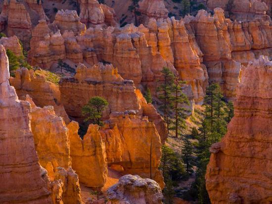 alan-copson-utah-bryce-canyon-national-park-near-sunset-point-usa