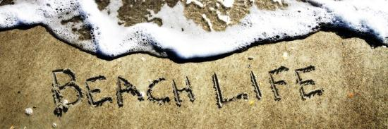 alan-hausenflock-beach-life