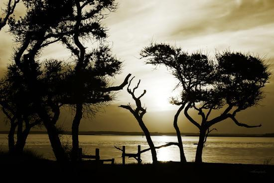 alan-hausenflock-blissful-shore-i