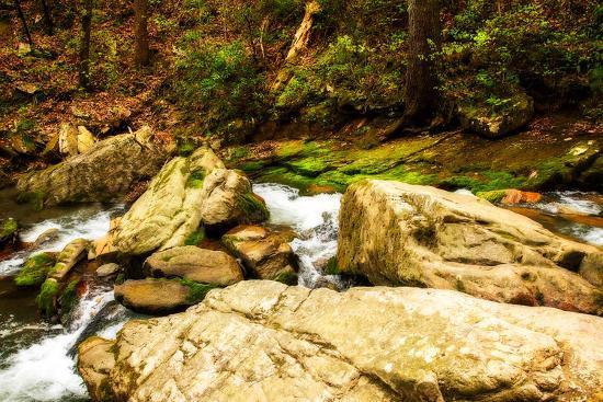 alan-hausenflock-covington-woods-i