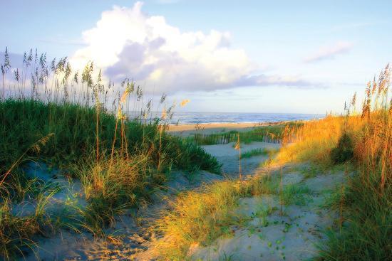 alan-hausenflock-dunes-i