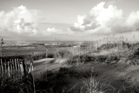 alan-hausenflock-dunes-ii-bw