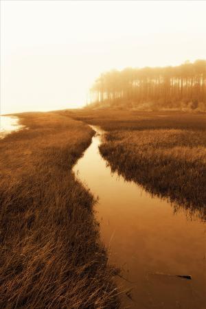 alan-hausenflock-harker-s-island-marsh-i