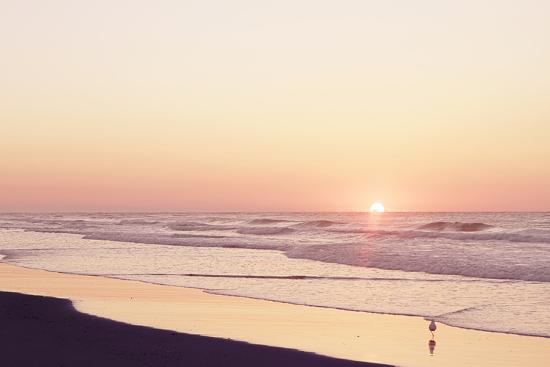 alan-hausenflock-lavender-sunrise