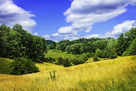 alan-hausenflock-rappahannock-county-iv