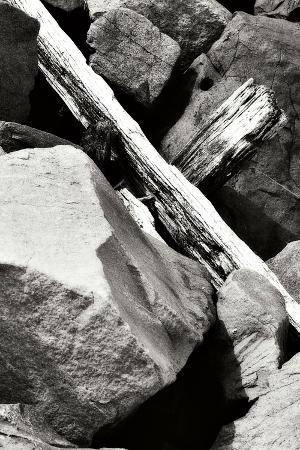 alan-hausenflock-rocks-and-wood-ii-bw