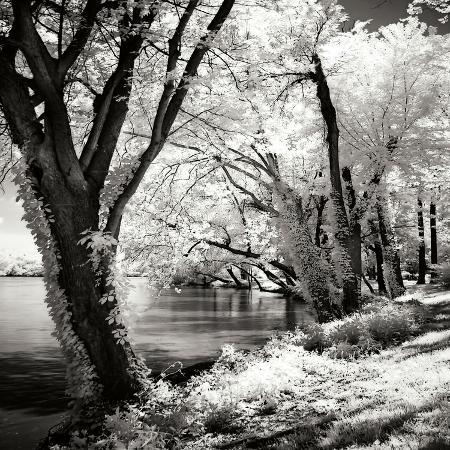 alan-hausenflock-spring-on-the-river-square-ii